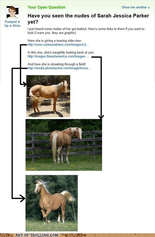 best of week horse nudes photos sarah jessica parker Yahoo Answer Fails - 5207340032