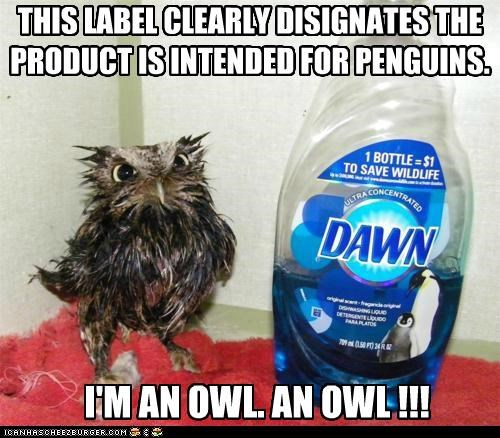 THIS LABEL CLEARLY DISIGNATES THE PRODUCT IS INTENDED FOR PENGUINS. I'M AN OWL. AN OWL !!!