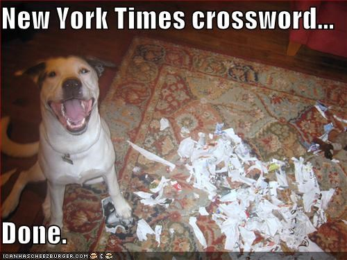 crossword destruction done happy dog mess new york times paper pit bull pitbull proud smile smiles smiling torn up - 5208556288