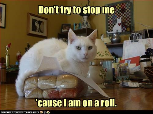 Don't try to stop me 'cause I am on a roll.