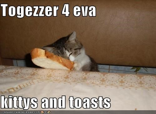 Cheezburger Image 5210619904