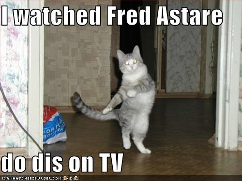 cat,dance,dancing,fred astaire,groove,I Can Has Cheezburger
