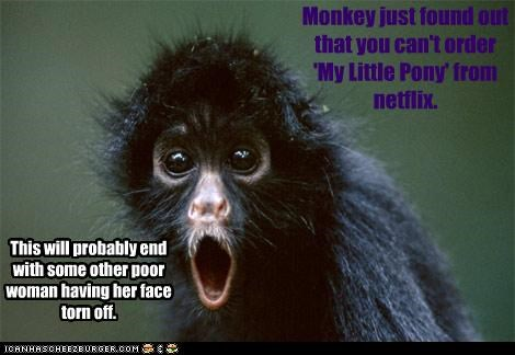 Monkey just found out that you can't order 'My Little Pony' from netflix. This will probably end with some other poor woman having her face torn off.