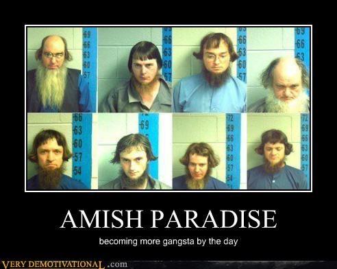 amish gangsta hilarious - 5211358976