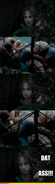 dat ass Harry Potter hermione - 5211519744