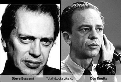 actor actors don knotts Steve Buscemeyes steve buscemi - 5212861184