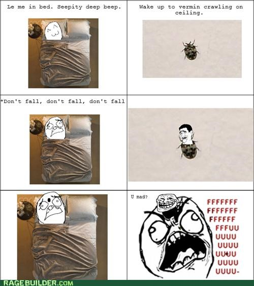 bug,gross,Rage Comics,sleep