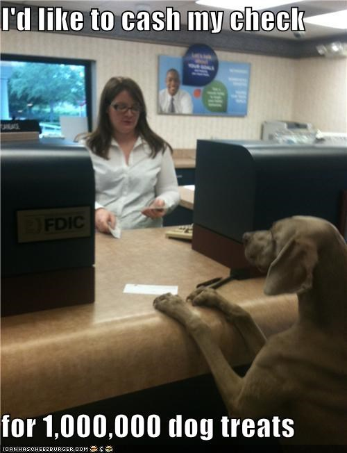 bank,best of the week,check,cheque,cheques-if-youre-english,food,Hall of Fame,money,noms,treats,weimaraner