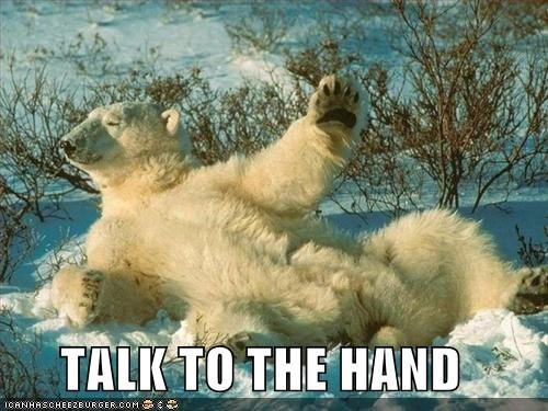 animals I Can Has Cheezburger polar bears poses talk to the hand