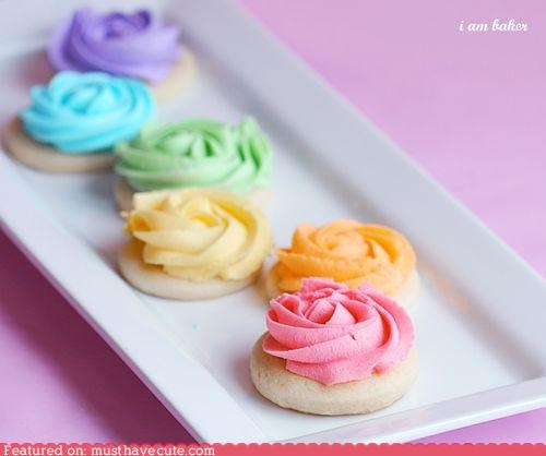 cookies,epicute,frosting,rainbow,roses