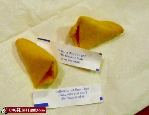 cookies,dogs,FAIL,failure,fortune cookie,pets,restaurant,wisdom