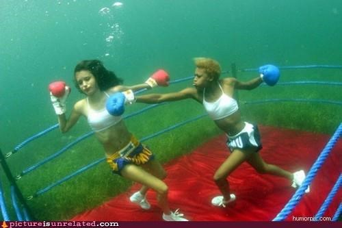 boxing,fight,ladies,underwater,wtf