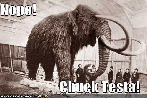 Chuck Testa funny historic lols meme Photo - 5217431296