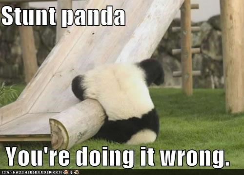 animals doing it wrong FAIL fall I Can Has Cheezburger panda bears panda slides stunts