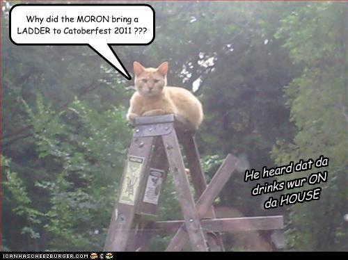 Why did the MORON bring a LADDER to Catoberfest 2011 ??? He heard dat da drinks wur ON da HOUSE
