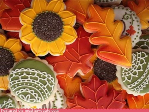 autumn cookies epicute fall flowers leaves - 5218140160