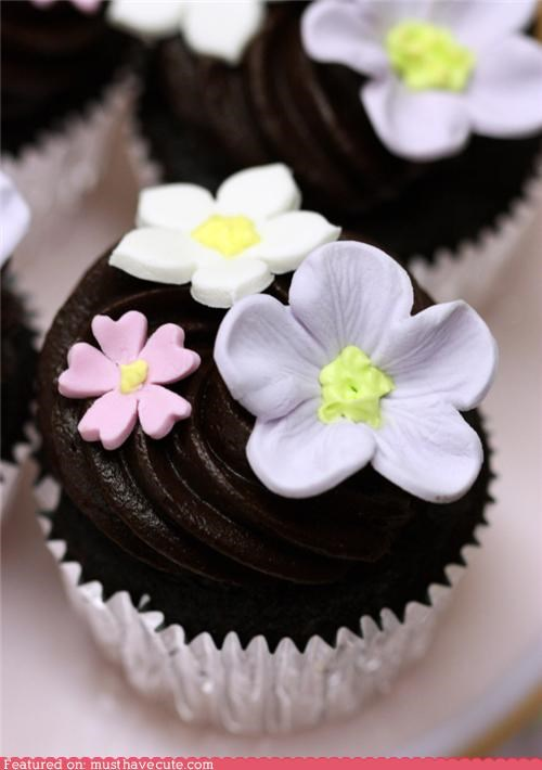 chocolate cupcakes epicute flowers fondant frosting pink purple white - 5218154752