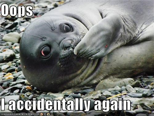 accidentally again animals I Can Has Cheezburger oops seals - 5218577408