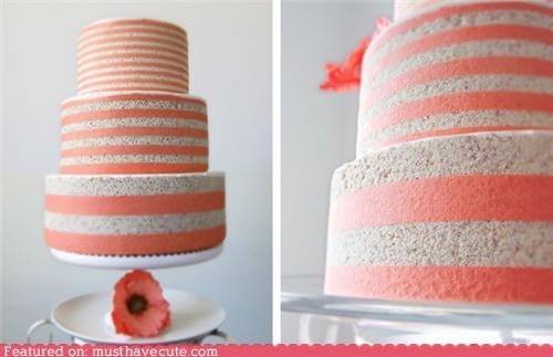 cake epicute Flower grey layers pink stripes - 5219622912