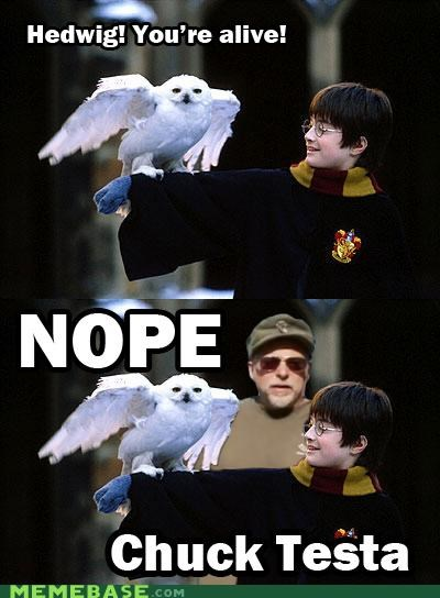 animemes dead Harry Potter hedwig nope Owl spoilers - 5219639808