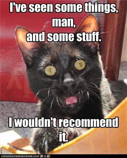 cannot unsee caption captioned cat do not want have I recommend seen some stuff things wouldnt - 5219730432