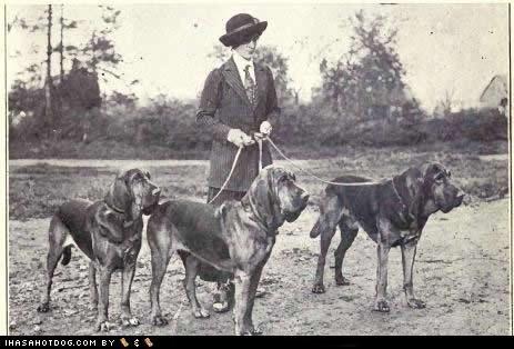 bloodhound goggie ob teh week vintage vintage photography - 5219960832