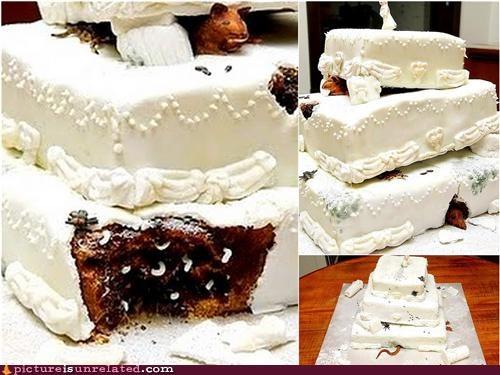 cake maggots rats ruin wtf - 5220467712