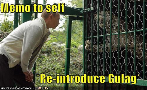 political pictures Vladimir Putin vladurday - 5220605440