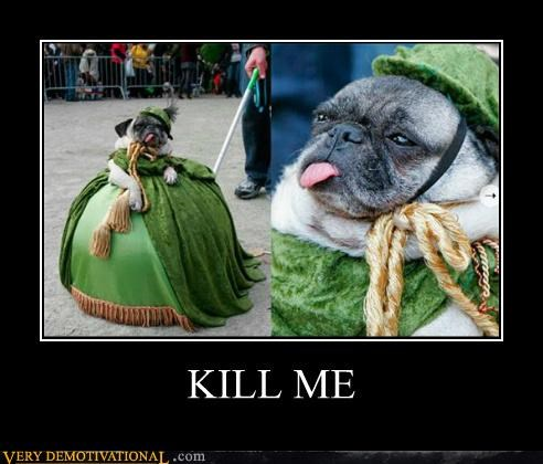 dogs hilarious kill me pug - 5221062656