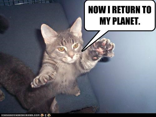 caption captioned cat flying now planet return - 5221410304