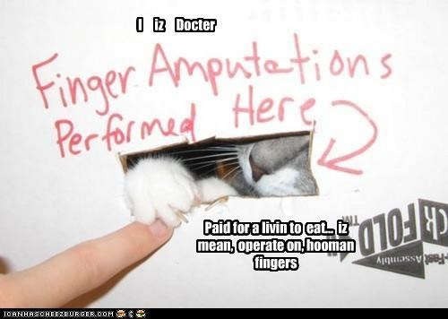I iz Docter Paid for a livin to eat... iz mean, operate on, hooman fingers