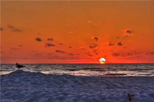 beach blue florida getaways gulf of mexico north america ocean orange sand sun sunset united states - 5223232512