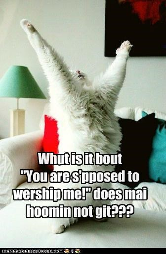 """Whut is it bout """"You are s'pposed to wership me!"""" does mai hoomin not git???"""