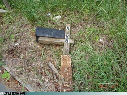 fallen,grass,mailbox,Sad