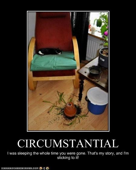 CIRCUMSTANTIAL I was sleeping the whole time you were gone. That's my story, and I'm sticking to it!