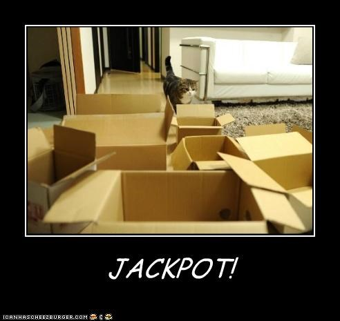box boxes caption captioned cat heaven jackpot maru - 5225140480