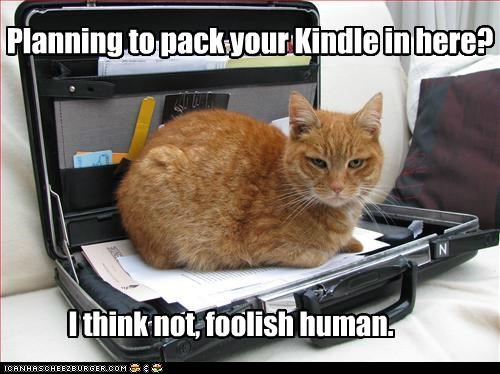 Planning to pack your Kindle in here? I think not, foolish human.