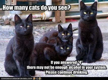 advisory alcohol amount caption captioned cat Cats continue drinking four Hall of Fame how how many many please question see