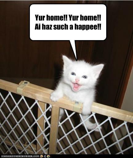 Yur home!! Yur home!! Ai haz such a happee!!