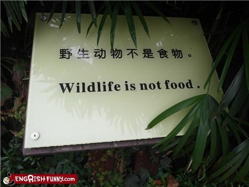 food meat sign warning wildlife zoo