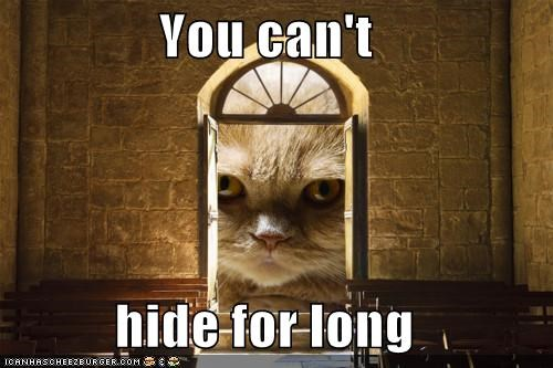cant,caption,captioned,cat,hide,long,ominous,peeking,promise,spying,threat,you