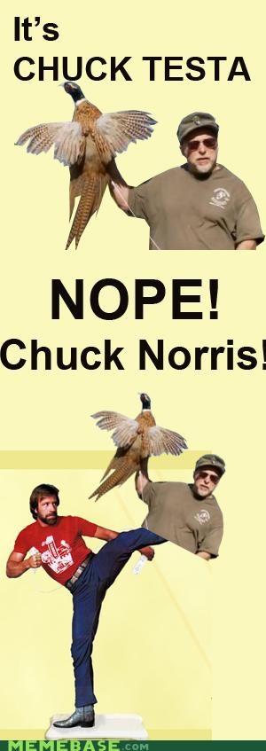 Chuck kick nope norris pheasant - 5228449792