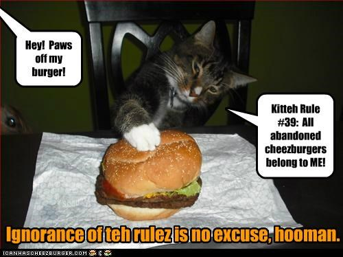 Kitteh Rule #39: All abandoned cheezburgers belong to ME! Ignorance of teh rulez is no excuse, hooman. Hey! Paws off my burger!