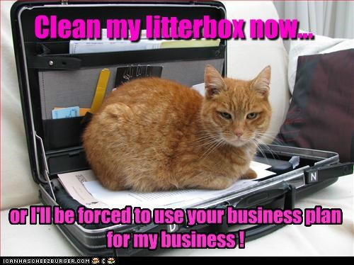 Clean my litterbox now... or I'll be forced to use your business plan for my business !