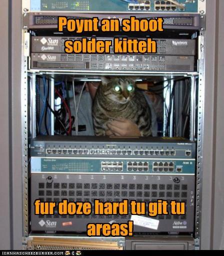 Cheezburger Image 5229701888