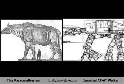 animal at at at-at walker paraceratherium star wars