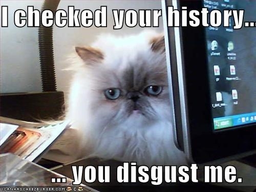 animals,browsing history,Cats,disgusted,history,I Can Has Cheezburger,internet