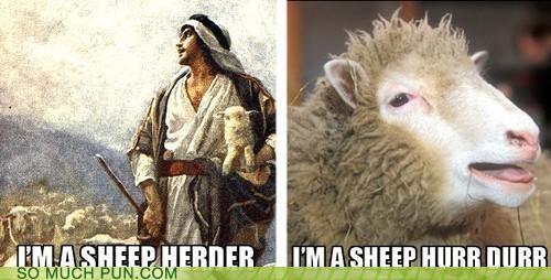 derp homophone hurr durr lolwut meme sheep sheep herder shepherd - 5230233600