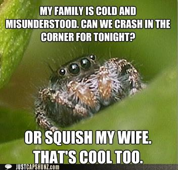 animals,gross,I Can Has Cheezburger,mean,misunderstood,spiders,squish,wife