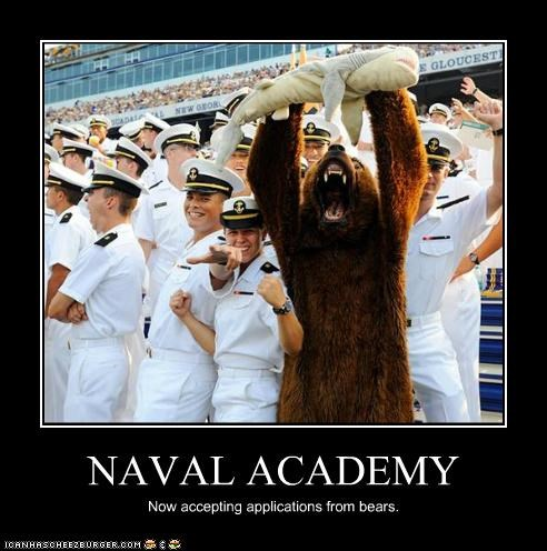 NAVAL ACADEMY Now accepting applications from bears.
